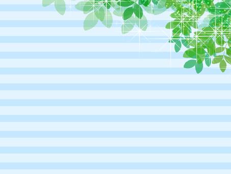 Wallpaper green
