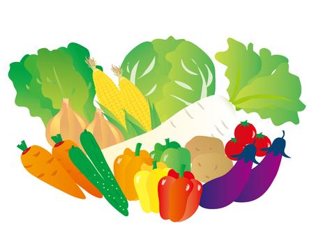 各種蔬菜4