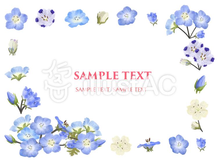 5月の花 ネモフィラ 2 フレームイラスト No 無料イラストなら イラストac
