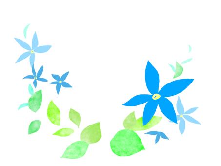 블루 스타
