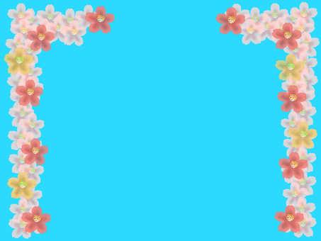 Cherry Blossom Gate