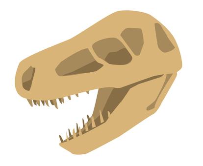 恐龍化石頭