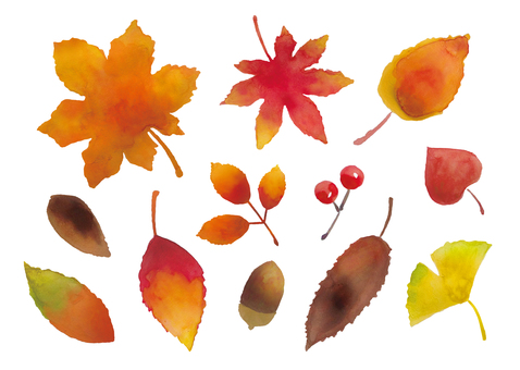 秋冬の葉水彩画