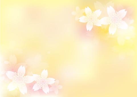 Blooming flowers 149