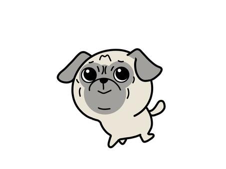 Pug for a walk