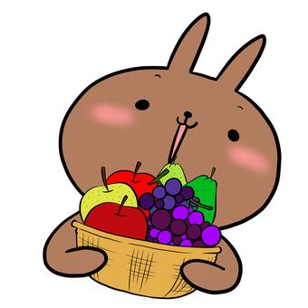 과일 바구니와 토끼 차