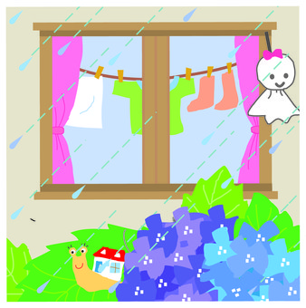 Window of the rainy season