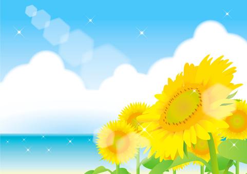 Sunflower and summer sky frame 6