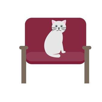 貓坐在椅子上