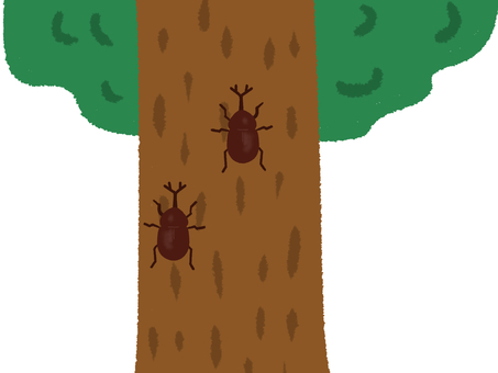 A tree with two beetles