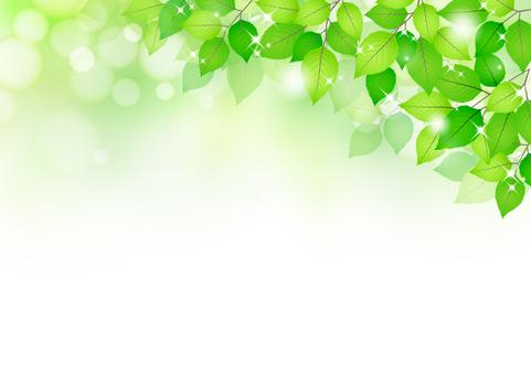 新的綠色材料236