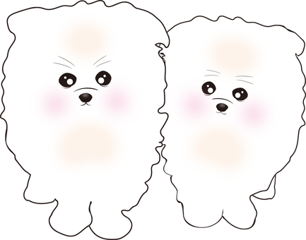 Pomeranian (white puppy) friend brothers