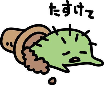 Loose cactus