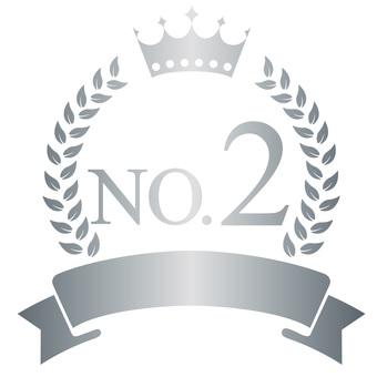 Silver Emblem NO 2