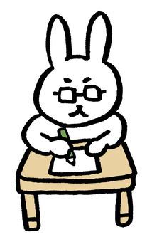 Studying Mr. Usagi