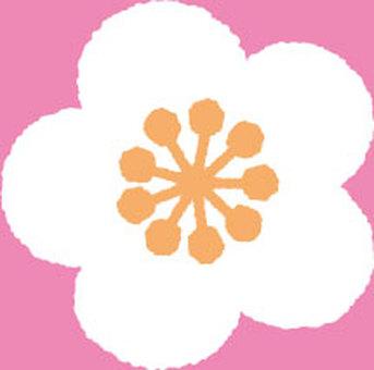 Plum blossom (white)