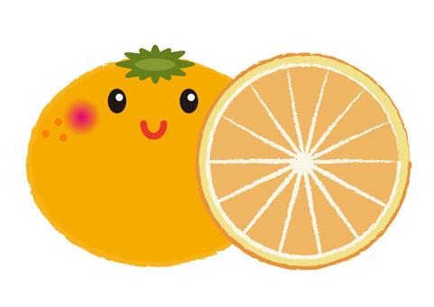 orange_ 얼굴 귤 3