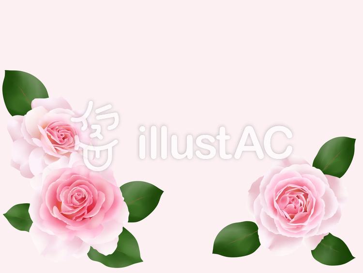 ピンク色の薔薇の花フレーム・2