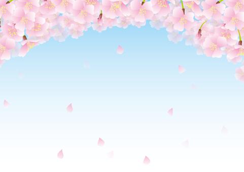 Spring Frame 028