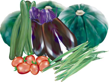 An assortment of real summer vegetables