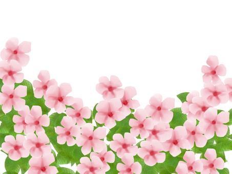 Daily grass light pink