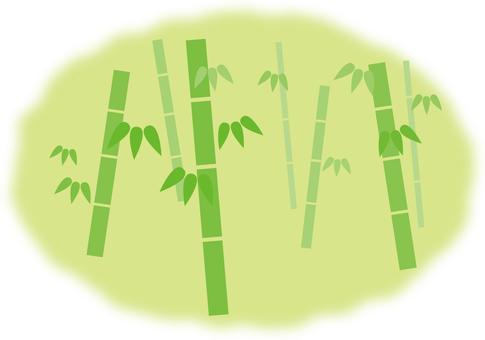 Landscape bamboo 2