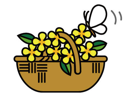 Flowers and butterflies in the basket