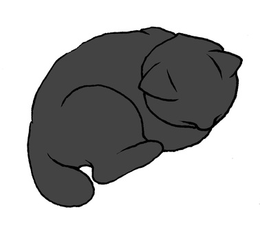 Black Cat Good night