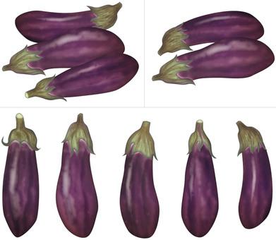 Eggplant (red purple) / vegetable