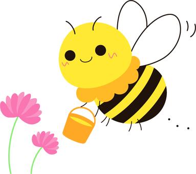 꿀벌 _ 꿀 수집