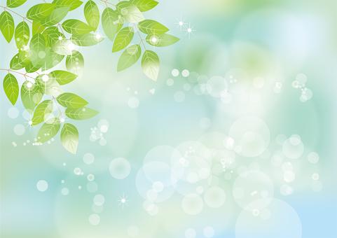 Glittering leaves & sky 46