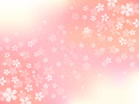 Sakuraguki [2]