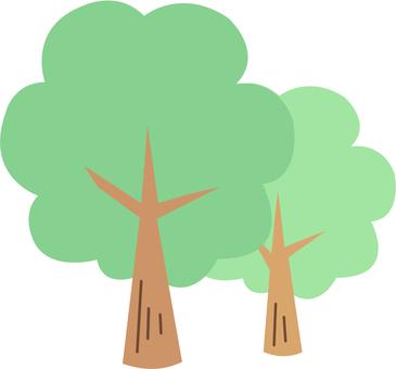【Plant】 tree