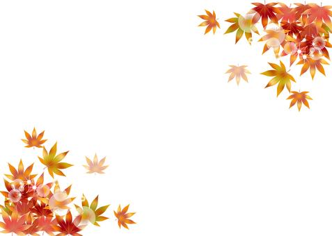 Autumn leaves 286