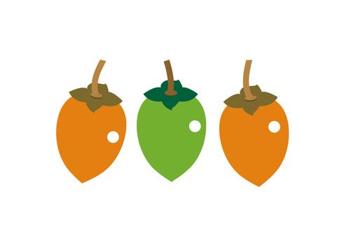 fruit_ persimmon