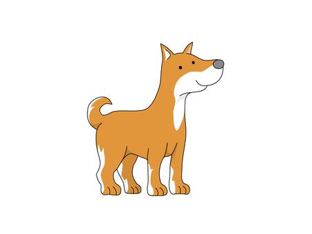 Dog (Japanese dog)