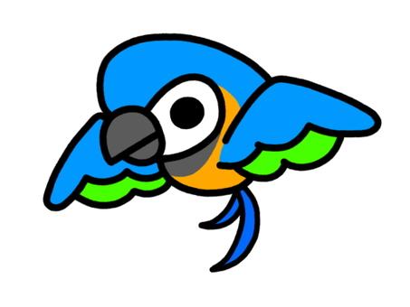 앵무새 루리 잉꼬