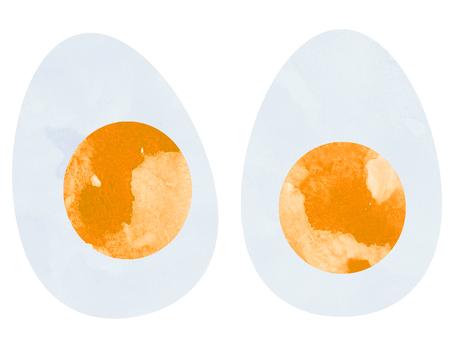 Egg (half-egg white) watercolor