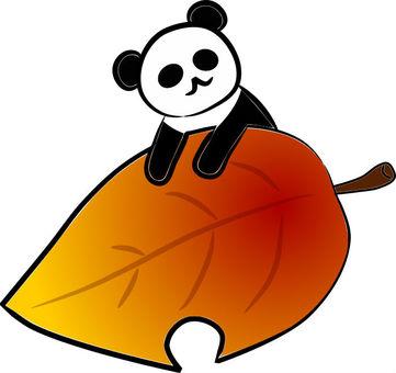 단풍과 팬더 씨