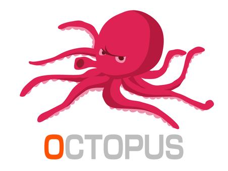 English word card O OCTOPUS