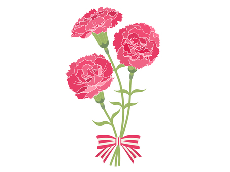 【Mother's Day】 Red Carnation