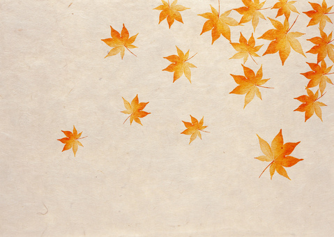 Autumn leaves _ Japanese paper _ background