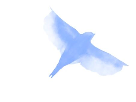Flying bird silhouette