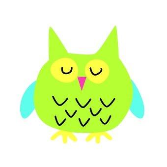 綠色貓頭鷹3