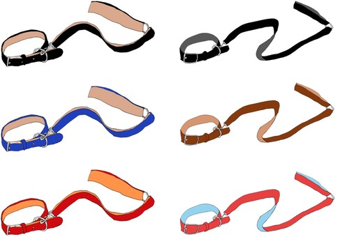 6 kinds of walking goods, collars and leads