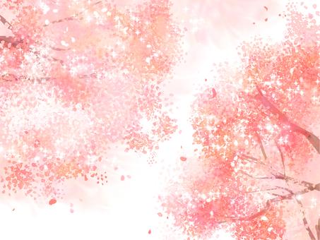 Background material Sakura 3