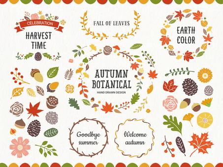 秋天的植物框架和裝飾套