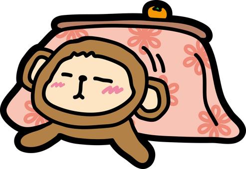 Kotatsu Saaru