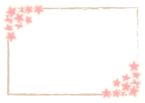 Transparent frame / Frame