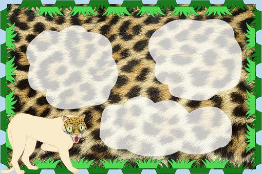 Leopard message board